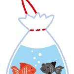 食塩水の作り方 金魚のための塩浴水 その効果は?